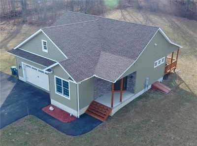 Walden Single Family Home For Sale: 1185 County Route 17