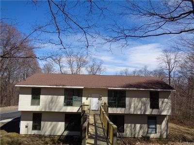 Orange County, Sullivan County, Ulster County Rental For Rent: 17 Hillington Road #Apt B