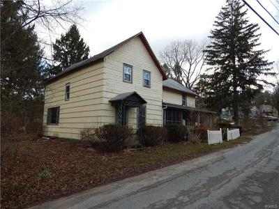 Port Jervis Single Family Home For Sale: 57 Old Greenville Turnpike