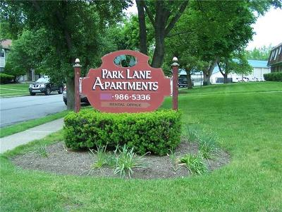 Orange County, Sullivan County, Ulster County Rental For Rent: 211 Park Ln #211