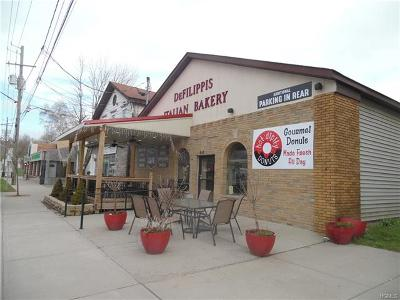 Monticello Commercial For Sale: 506 Broadway