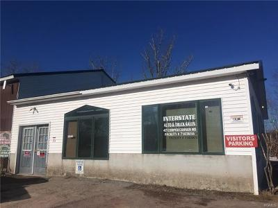Monticello Commercial For Sale: 47 Cooper Road