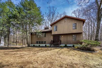 Croton-On-Hudson Single Family Home For Sale: 21 Sassi Drive