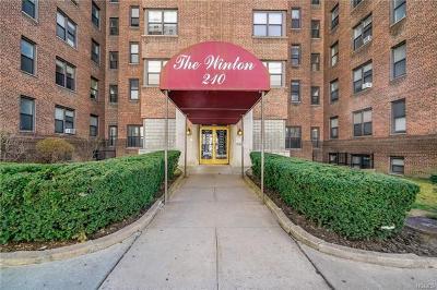 White Plains Condo/Townhouse For Sale: 210 Martine Avenue #1E
