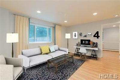 Westchester County Condo/Townhouse For Sale: 21 Lake Street #1A