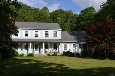 Dutchess County Single Family Home For Sale: 338 White Pond Road