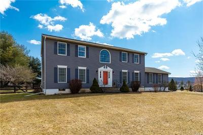 Wingdale Single Family Home For Sale: 20 Riverdale Drive