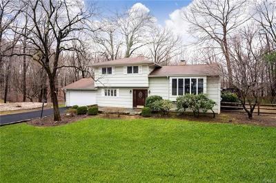 Westchester County Single Family Home For Sale: 13 Lisa Place