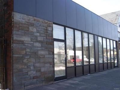 Monticello Commercial For Sale: 493 Broadway
