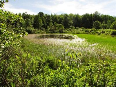 Liberty NY Residential Lots & Land For Sale: $70,000