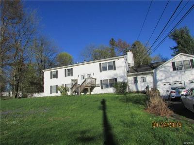 Newburgh Multi Family 2-4 For Sale: 531 Washington Avenue