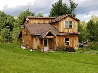 Narrowsburg NY Single Family Home For Sale: $179,900