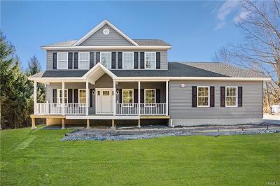 Poughkeepsie Single Family Home For Sale: 24 Spruce Lane