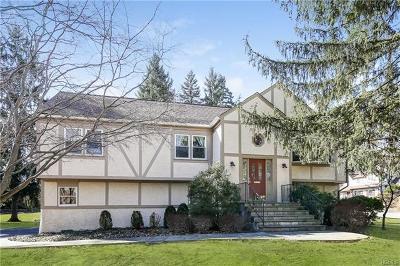 Sleepy Hollow Single Family Home For Sale: 551 Munroe Avenue