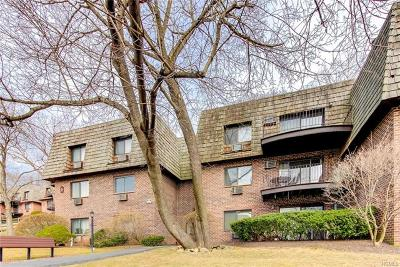 Ossining Condo/Townhouse For Sale: 3 Briarcliff Drive South #312