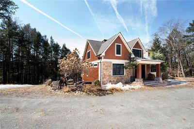 Callicoon, Callicoon Center Single Family Home For Sale: 288 Kenoza Trail