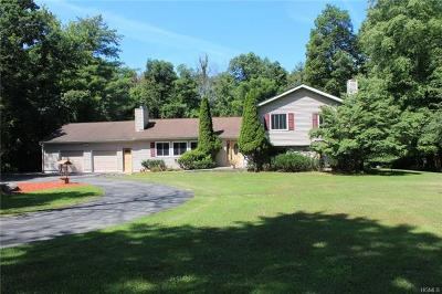 Wallkill Single Family Home For Sale: 481 State Route 32