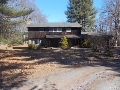 Blooming Grove Single Family Home For Sale: 17 Penny Lane