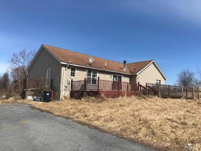 Amenia Single Family Home For Sale: 3 Flood Drive