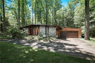 Single Family Home For Sale: 37 White Birch Drive