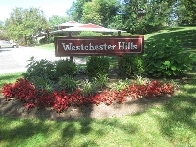 Elmsford Condo/Townhouse For Sale: 1611 Old Country Road