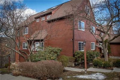 Brewster Condo/Townhouse For Sale: 406 Apple Tree Lane