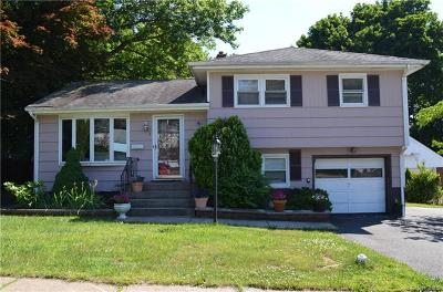 Suffern Single Family Home For Sale: 3 Meadowbrook Lane