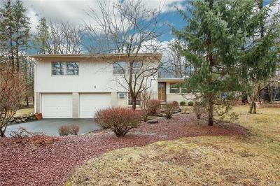 Suffern Single Family Home For Sale: 8 Hidden Valley Drive