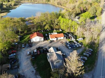 Monticello Commercial For Sale: 48 Kitz Road