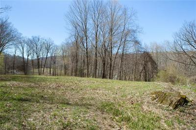 Dover Plains Residential Lots & Land For Sale: 0 W Dover Road