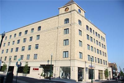 New Rochelle Rental For Rent: 11 Park Place #206