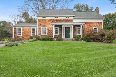 Dutchess County Single Family Home For Sale: 221 Shunpike