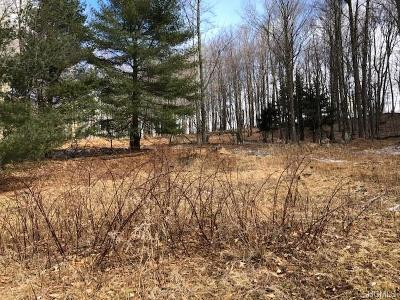 Residential Lots & Land For Sale: 358 Mutton Hill Road
