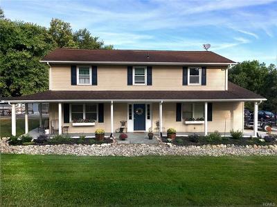 Pine Bush Single Family Home For Sale: 5138 Searsville Road