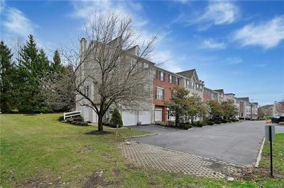 Nanuet Condo/Townhouse For Sale: 45 Meadow Lane