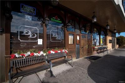 New City Commercial For Sale: 191 South Main Street