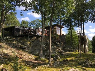 Dutchess County Single Family Home For Sale: 6 Poppinga Lane