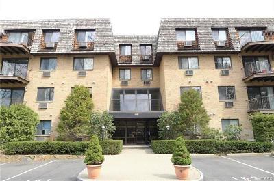 Scarsdale Rental For Rent: 508 Central Park Avenue #5209