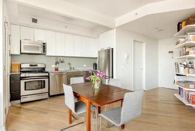 Brooklyn Condo/Townhouse For Sale: 230 Ashland #23B