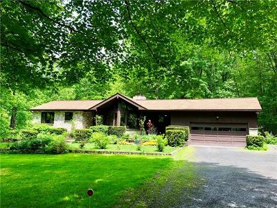 Dutchess County, Orange County, Sullivan County, Ulster County Single Family Home For Sale: 40 Cooper Road