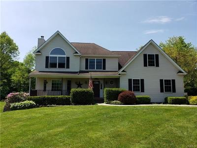 Wallkill Single Family Home For Sale: 14 Empire Drive