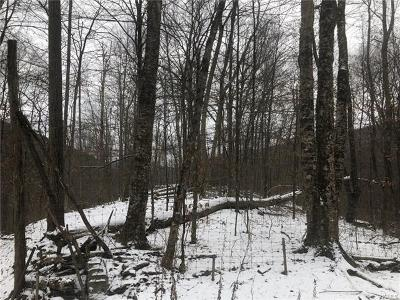 Delaware County Residential Lots & Land For Sale: 3.2 County Hwy 28