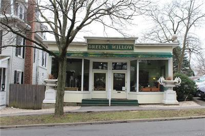 Rye Commercial For Sale: 9 Theodore Fremd Avenue