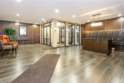 Scarsdale Co-Operative For Sale: 372 Central Park Avenue #4T