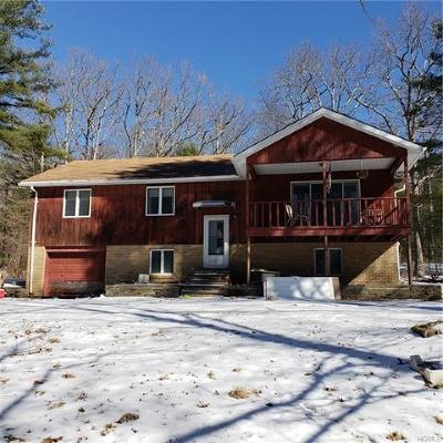 Glen Spey Single Family Home For Sale: 164 Taras Shevchenko Road