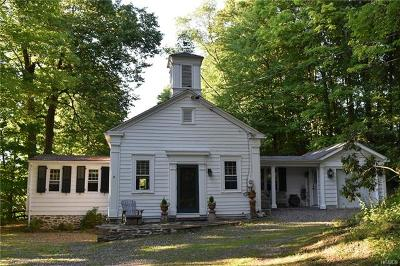 Rhinebeck Single Family Home For Sale: 99 Salisbury Turnpike