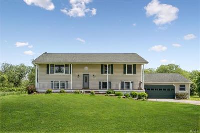 Warwick Single Family Home For Sale: 71 Lower Wisner Road