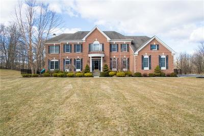 Dutchess County Single Family Home For Sale: 56 Somerset Road