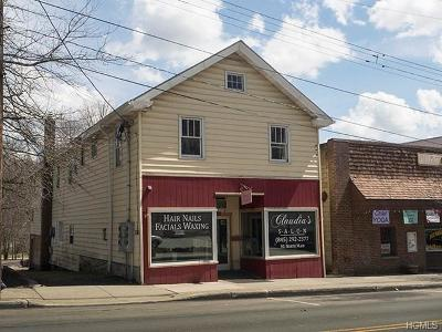 Liberty Commercial For Sale: 91 North Main Street