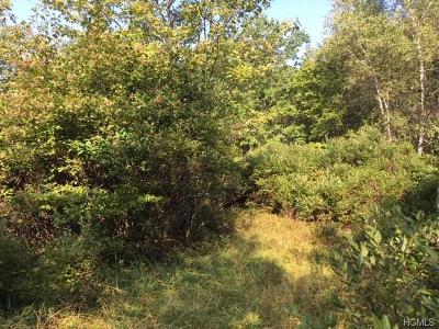 Sullivan County Residential Lots & Land For Sale: Lily Pond Road